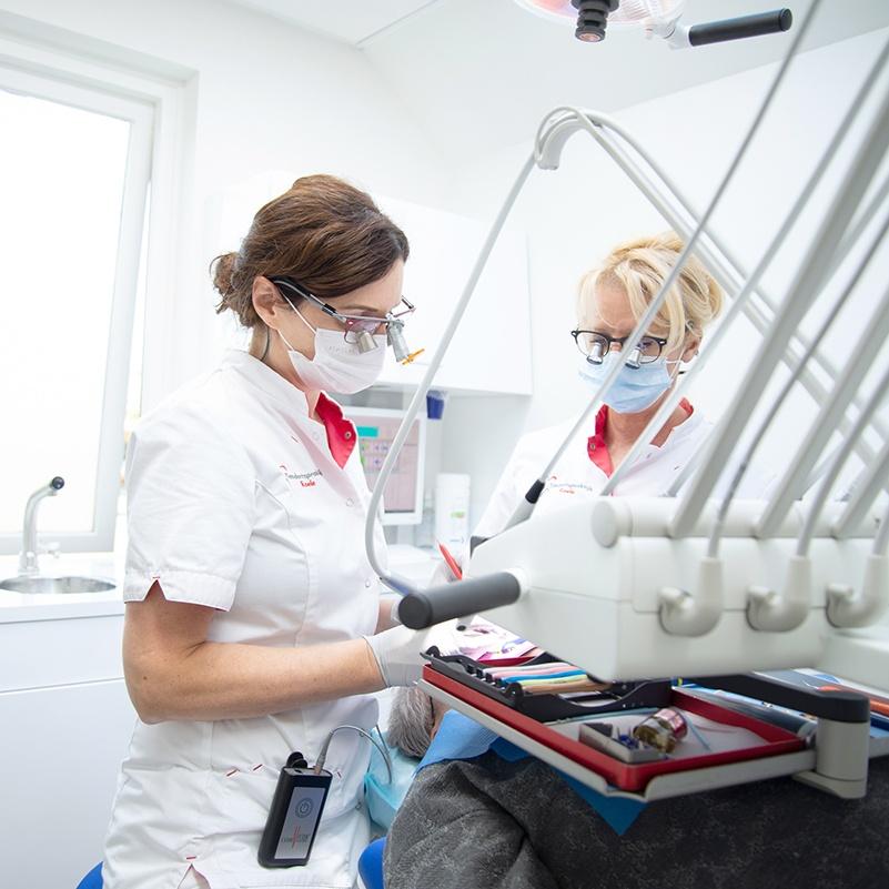 tandarts anca roele rijsbergen